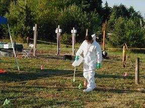 pesticides03.jpg